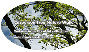Arbor Day walk with trees